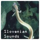 Carmina Slovenica - Slovenian Sounds