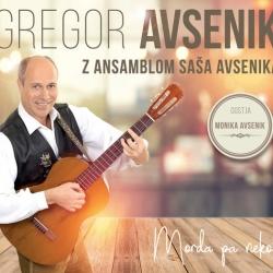 Gregor Avsenik - Morda Pa Nekoč