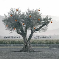 Rudi Bučar in Istrabend - Rudi Bučar in Istrabend