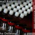 Tomaž Rožanec / Miha Debevec - Spopad Harmonik