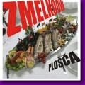 Zmelkoow - Plošča