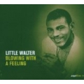 Little Walter - Blowing With A Feeling