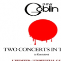 NEW GOBLIN - TWO CONCERTS IN TOKYO
